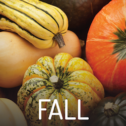 Fall Featured Foods Button