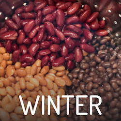 Winter Featured Foods Button
