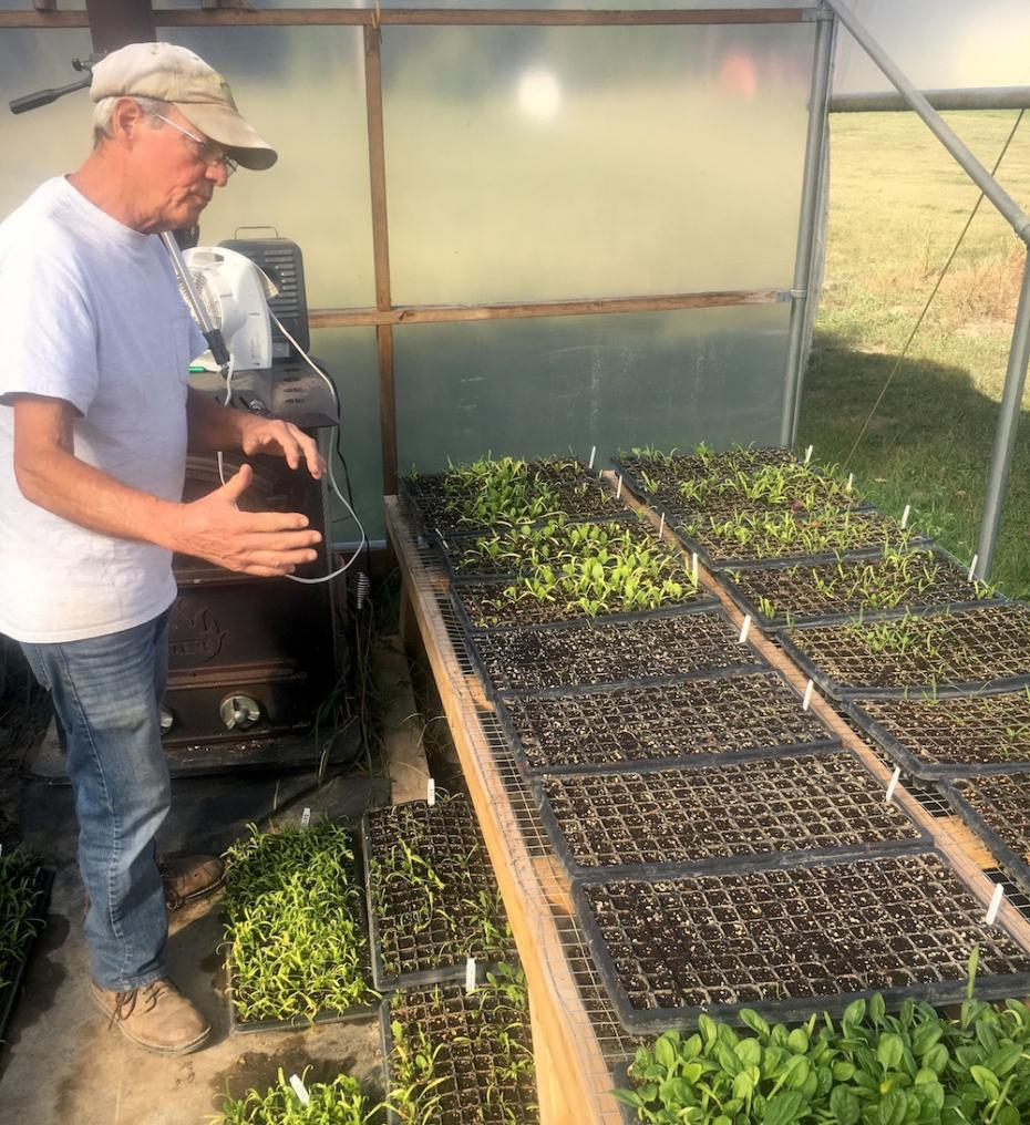 Mark Kastner of Hillcrest Farms tends to greens in his hoophouse. Photo Credit: Abigail Harper