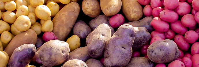 A spud for everyone!