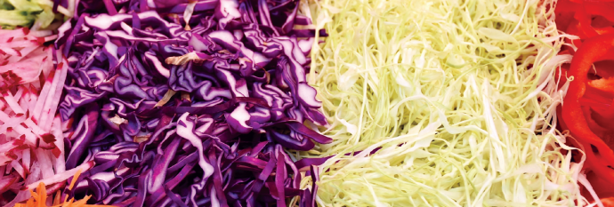 Photo of shredded purple and green cabbage.