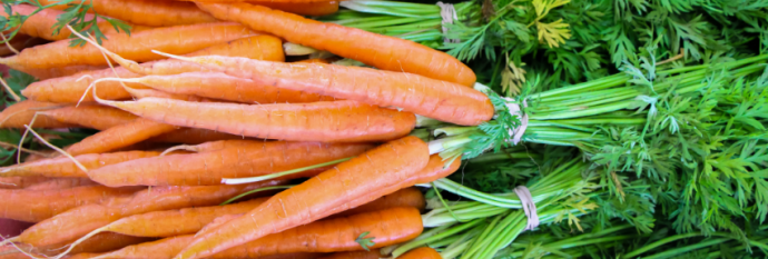 carrots bunches